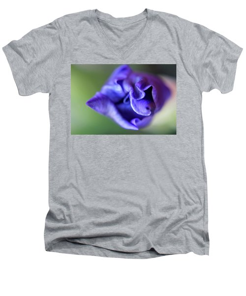 Iris Unfolding Men's V-Neck T-Shirt
