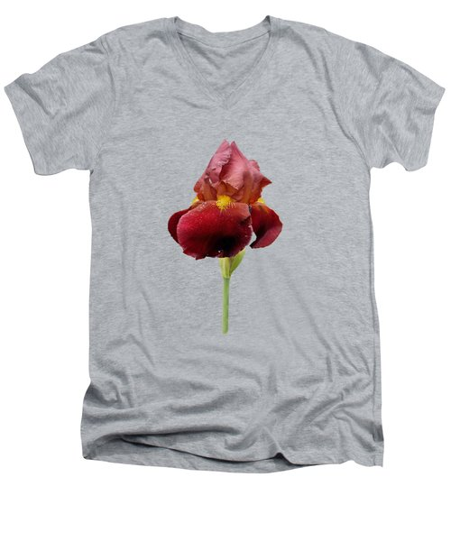 Iris Vitafire Transparent Background Men's V-Neck T-Shirt