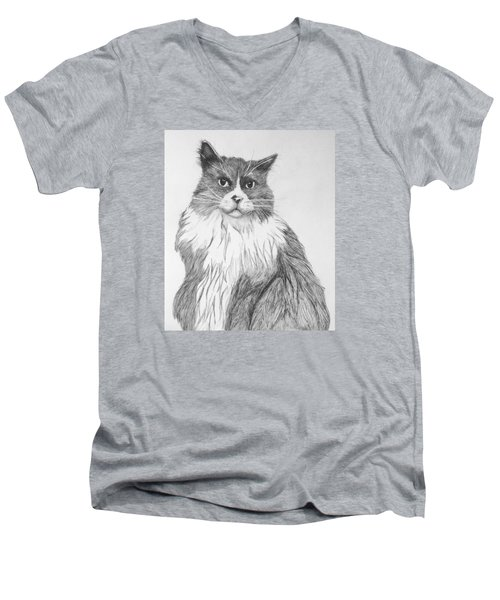 Men's V-Neck T-Shirt featuring the drawing Is It Dinner Time by John Stuart Webbstock