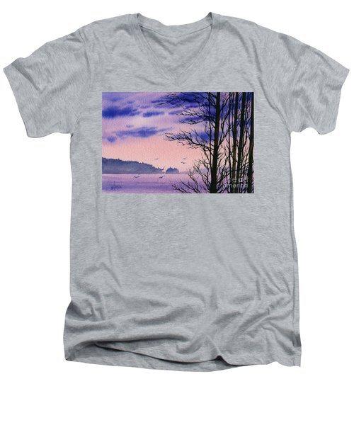 Men's V-Neck T-Shirt featuring the painting Island Point by James Williamson