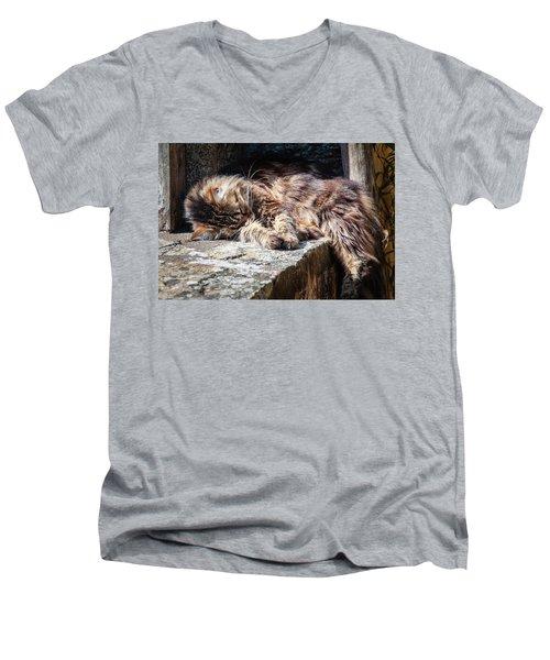 It's A Hard Life Men's V-Neck T-Shirt