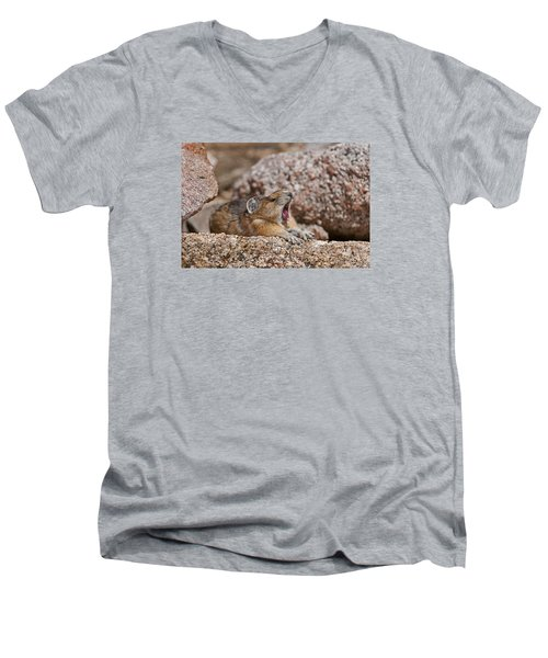 Men's V-Neck T-Shirt featuring the photograph It's Been A Long Day by Gary Lengyel