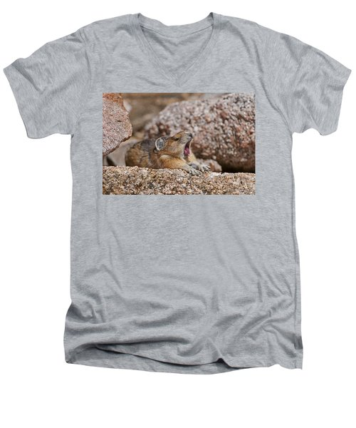 It's Been A Long Day Men's V-Neck T-Shirt