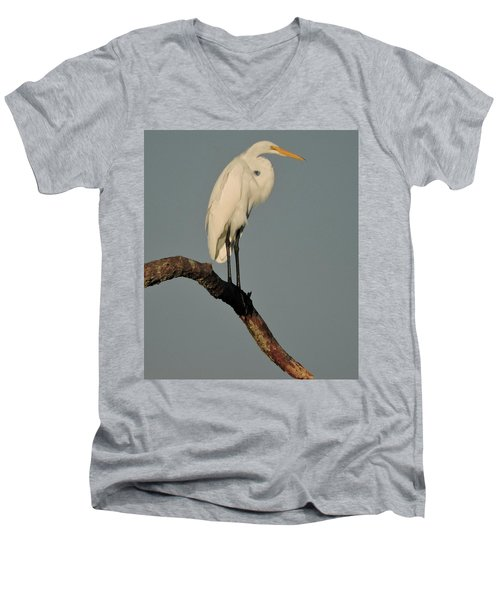 January Egret Men's V-Neck T-Shirt