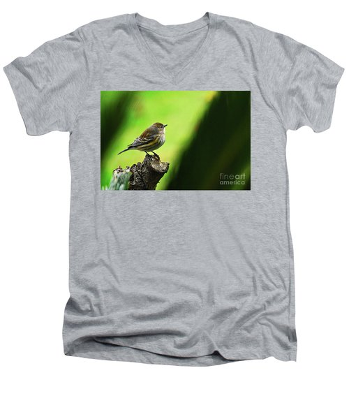 Men's V-Neck T-Shirt featuring the photograph January Migration by Debby Pueschel