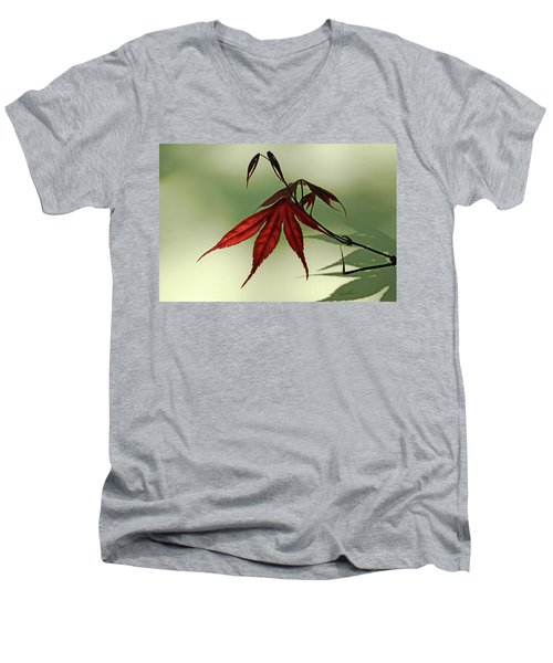 Men's V-Neck T-Shirt featuring the photograph Japanese Maple Leaf by Ann Lauwers