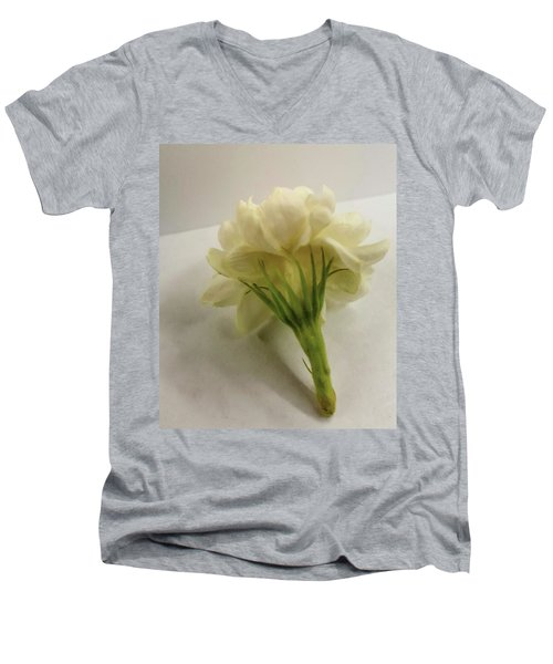Jasmine Men's V-Neck T-Shirt