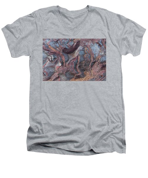 Jaspilite Men's V-Neck T-Shirt