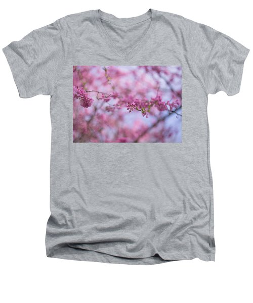 Joy Of Spring Men's V-Neck T-Shirt