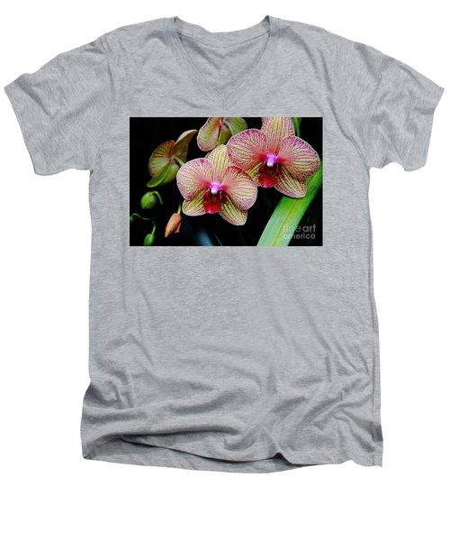 Joy Within Men's V-Neck T-Shirt