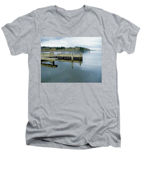 Juanita Bay In Gray Men's V-Neck T-Shirt