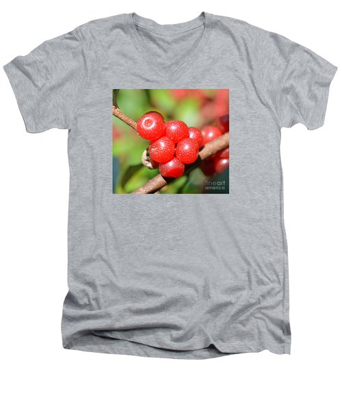 Juicy Red Men's V-Neck T-Shirt by Lew Davis