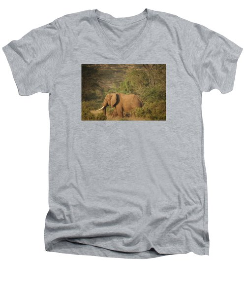 Men's V-Neck T-Shirt featuring the photograph Just Passing Through by Gary Hall