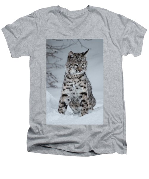 Juvenile Bobcat In The Snow Men's V-Neck T-Shirt