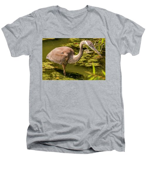 Juvenile Great Blue Heron Men's V-Neck T-Shirt