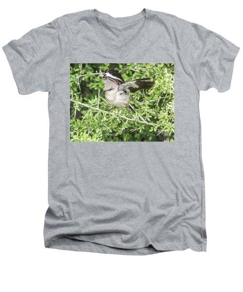 Juvenile Mockingbird With Crossbill Men's V-Neck T-Shirt