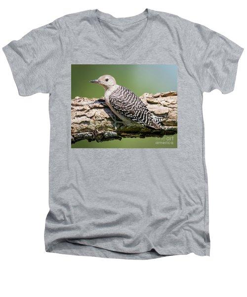 Juvenile Red-bellied Woodpecker Men's V-Neck T-Shirt by Ricky L Jones