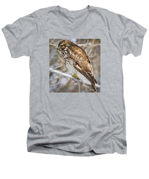 Men's V-Neck T-Shirt featuring the photograph Juvenile Red-shouldered Hawk  by Ricky L Jones