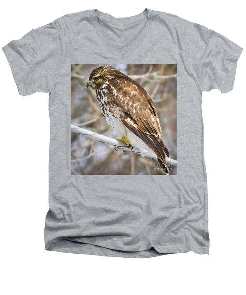 Juvenile Red-shouldered Hawk  Men's V-Neck T-Shirt