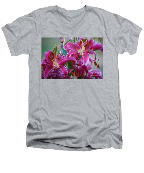 K And D Lilly 4 Men's V-Neck T-Shirt