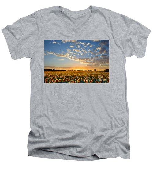 Kansas Sunflowers At Sunset Men's V-Neck T-Shirt
