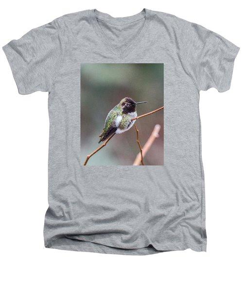 Karisa's Hummingbird.2 Men's V-Neck T-Shirt by E Faithe Lester
