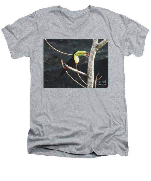 Keel-billed Toucan Men's V-Neck T-Shirt