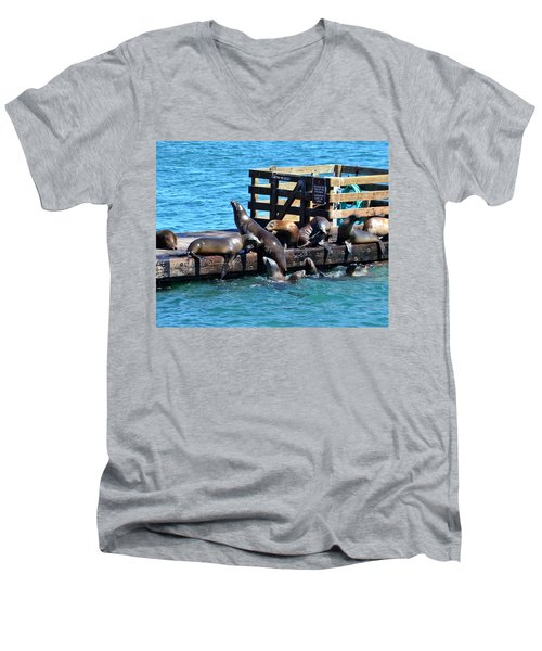 Keep Off The Dock - Sea Lions Can't Read Men's V-Neck T-Shirt