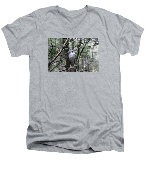 Keeping Eyes Alert Men's V-Neck T-Shirt