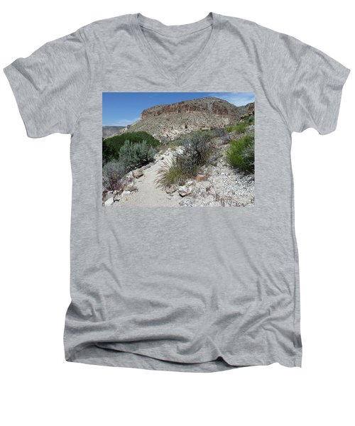 Men's V-Neck T-Shirt featuring the photograph Kershaw-ryan State Park by Joel Deutsch