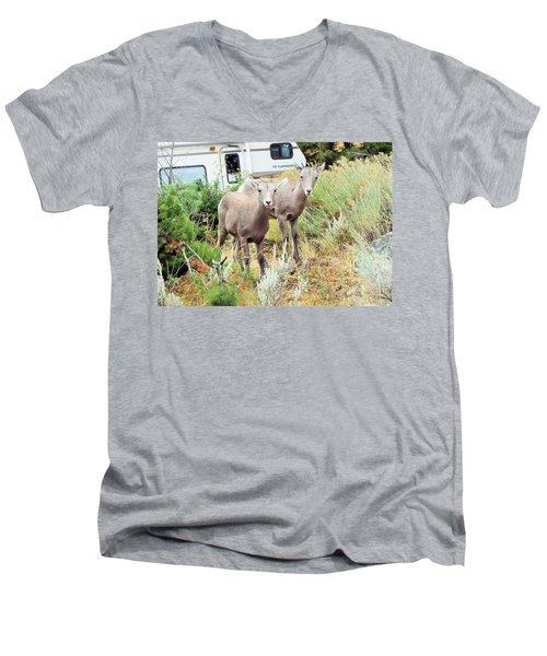Kid Goats Men's V-Neck T-Shirt