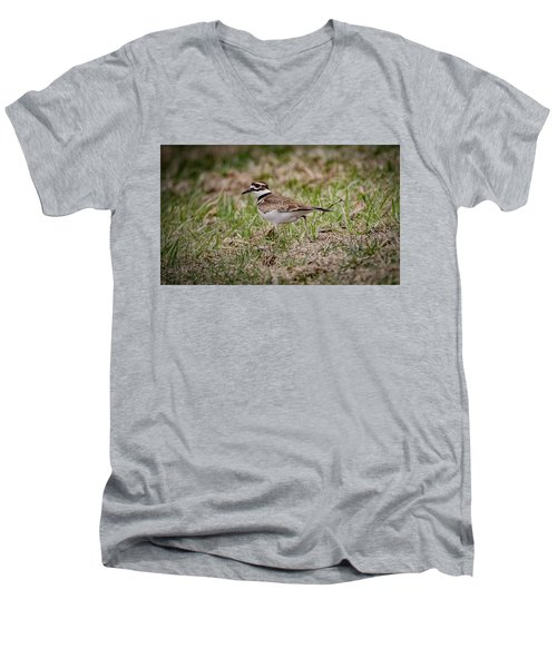 Killdeer Men's V-Neck T-Shirt by Ray Congrove