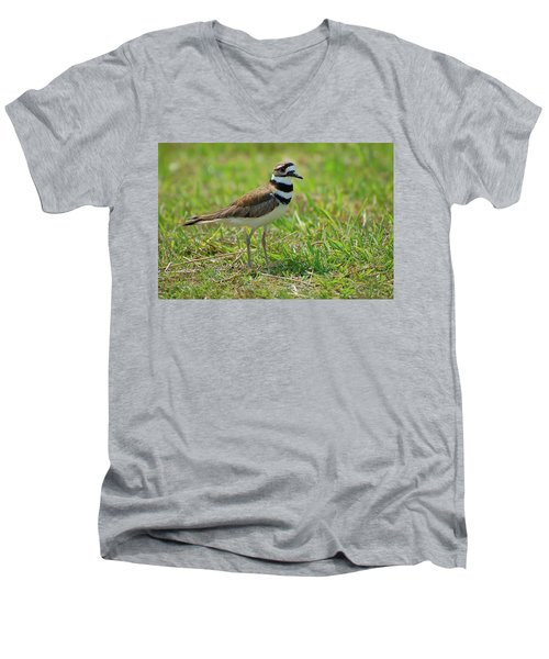 Killdeer Men's V-Neck T-Shirt by Rich Leighton