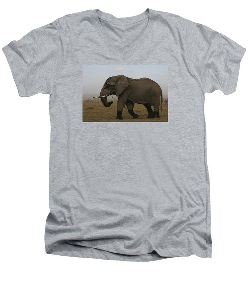 Men's V-Neck T-Shirt featuring the photograph King Of The Savannah by Gary Hall