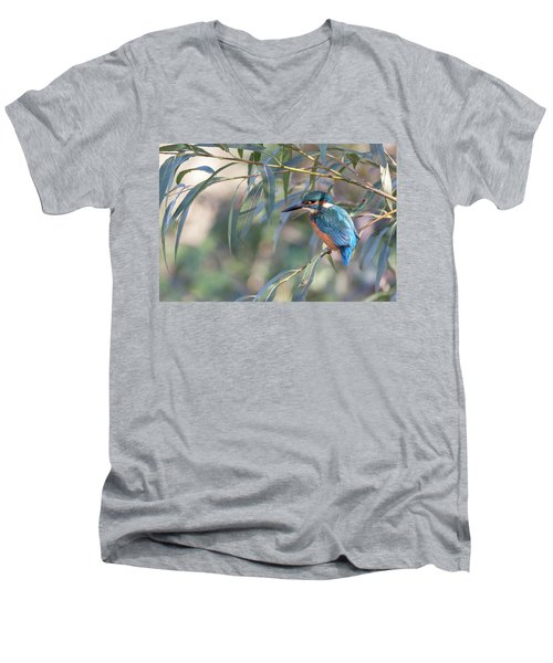 Kingfisher In Willow Men's V-Neck T-Shirt