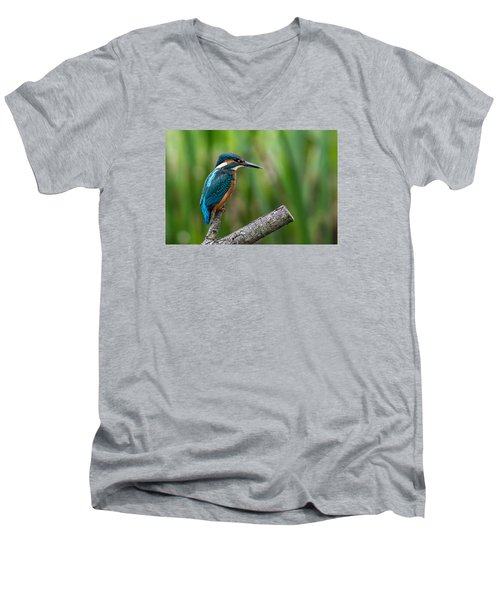 Kingfisher Pose Men's V-Neck T-Shirt