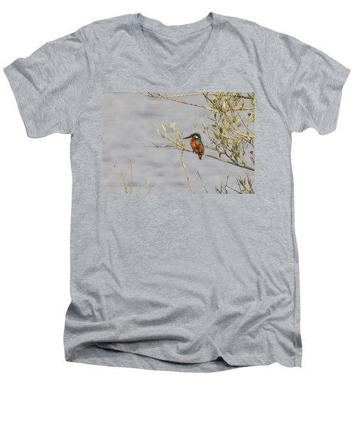 Kingfisher Waiting Men's V-Neck T-Shirt