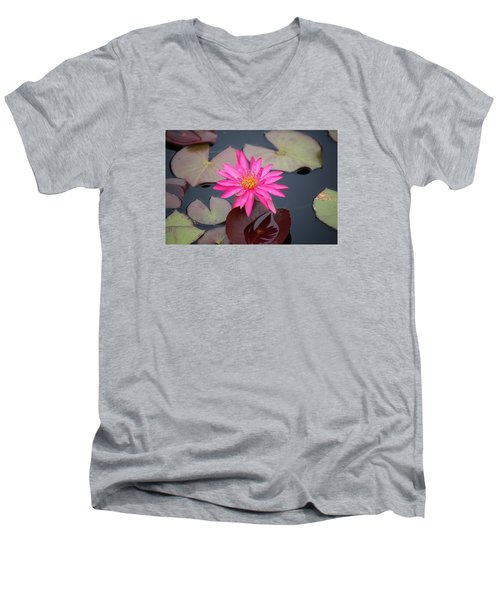 Kinky Stamens Men's V-Neck T-Shirt