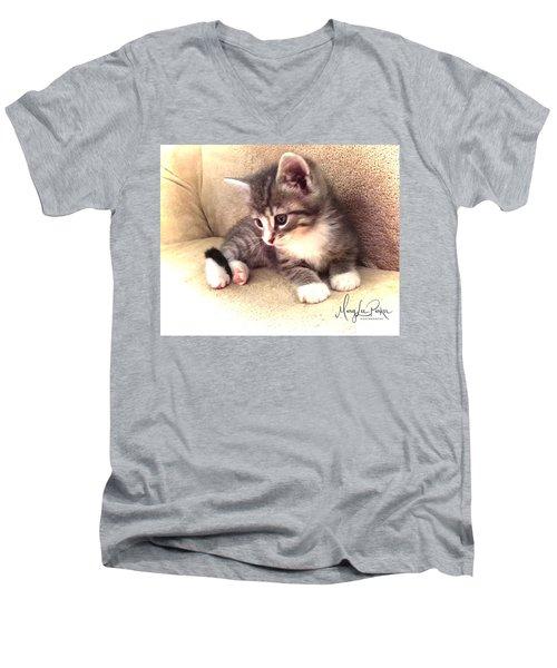 Kitten Deep In Thought Men's V-Neck T-Shirt