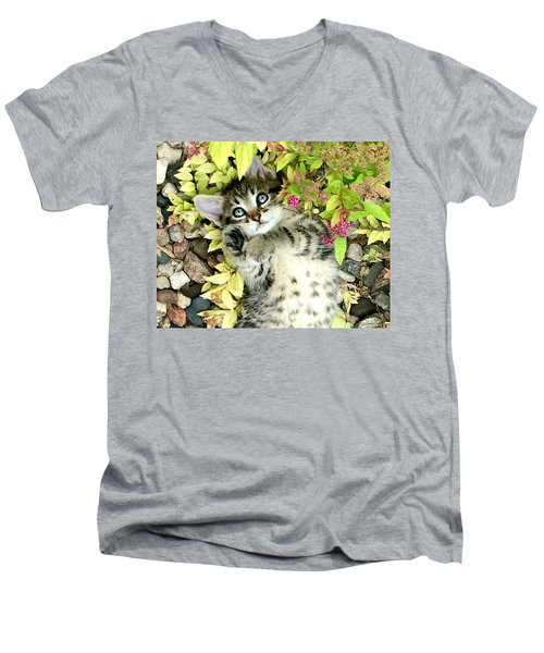Kitten Dreams Men's V-Neck T-Shirt