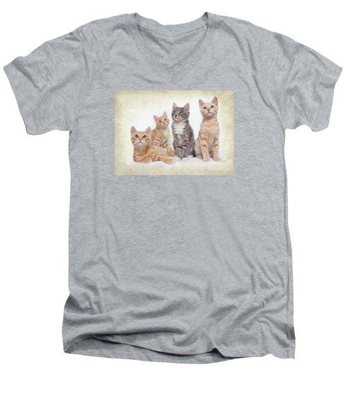 Kittens Men's V-Neck T-Shirt