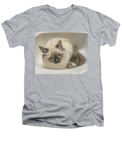 Kitty Blue Eyes Men's V-Neck T-Shirt