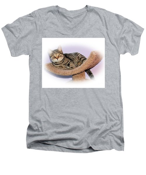 Men's V-Neck T-Shirt featuring the photograph Kitty Perch by Debbie Stahre