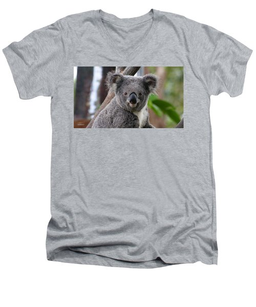 Koala Bear 7 Men's V-Neck T-Shirt