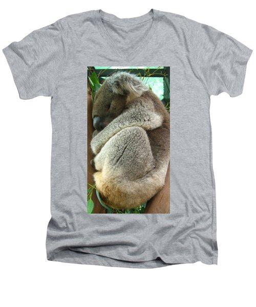Koala Men's V-Neck T-Shirt