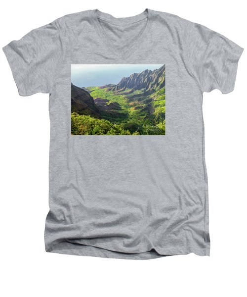 Kokee Park Men's V-Neck T-Shirt