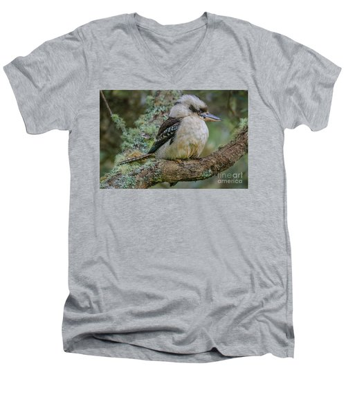 Kookaburra 4 Men's V-Neck T-Shirt