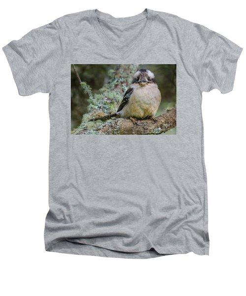 Kookaburra 3 Men's V-Neck T-Shirt