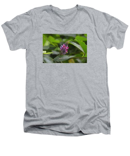 Kudzu Men's V-Neck T-Shirt