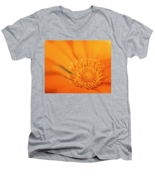 La Fleur D'orange Men's V-Neck T-Shirt